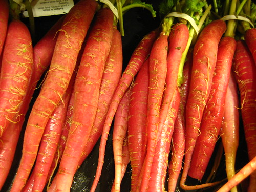 Radish/Carrot Frenzy by barrycollins3.