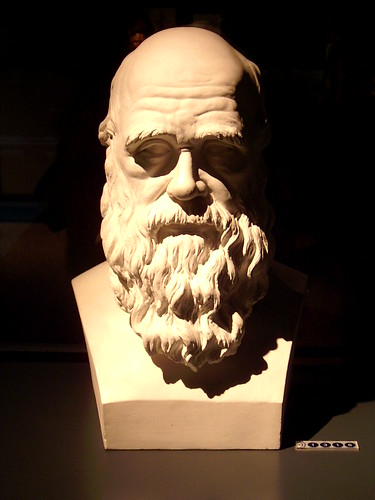 Charles Darwin, Naturkundemuseum Berlin