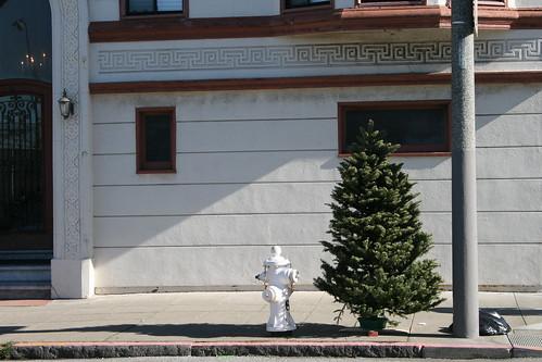 Sad post christmas tree