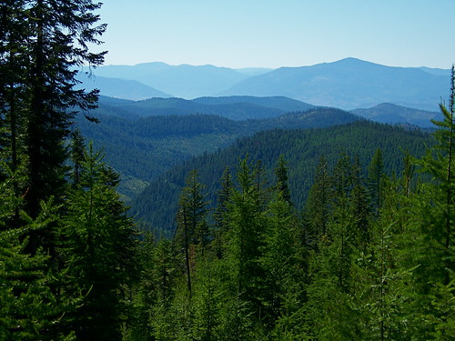 From the east slope of Bighole