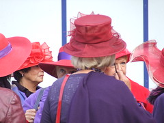 red hat society