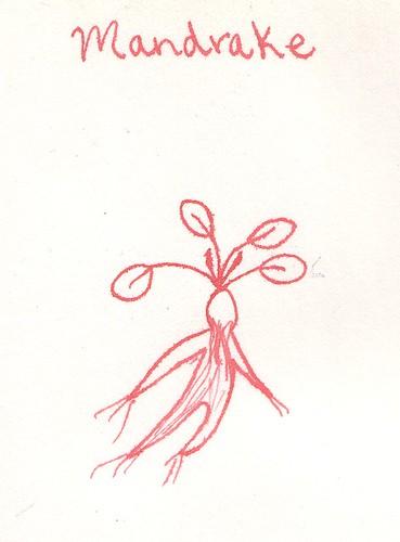 Mandrake Grimoire Page