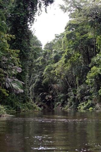 Costa Rica - Día 3 (274)