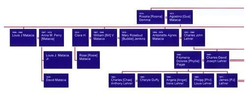 Demma Family Tree02