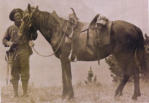Ranger de Montana