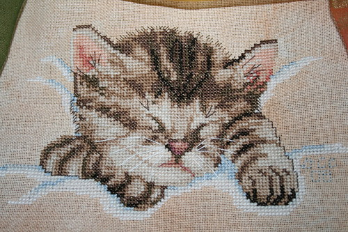 Sleeping kitty Cross stitch upclose