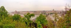 Panorama di Pest da Buda.