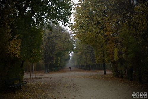 Autumn in Schonbrunn