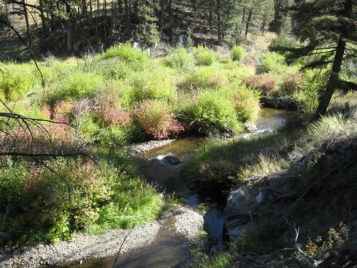 Humbug Spires Trail