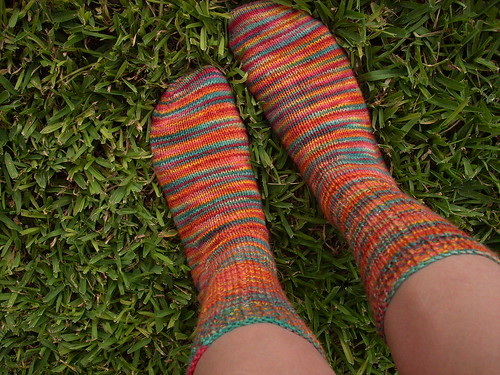 IN RAINBOW SOCKS
