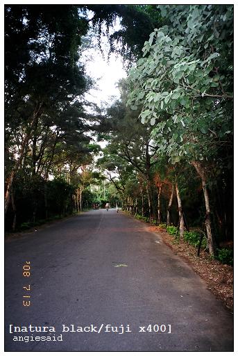 b-20080713_natura_096_iso4_029.jpg