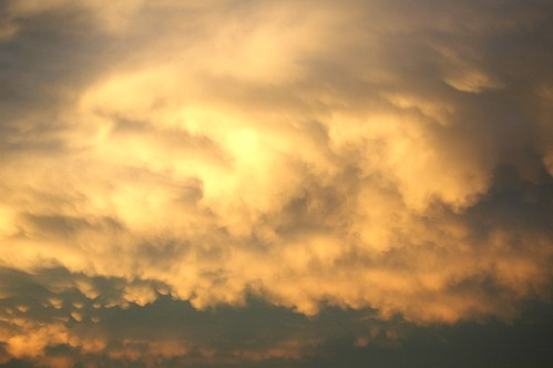 Golden Cloud