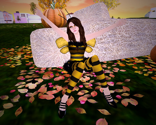 Gogo Bee by you.