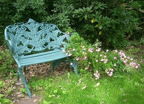 Gartenbank mit rosa Rose