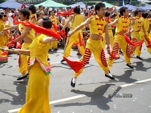 Parade der Kulturen Ffm 2008 (09)