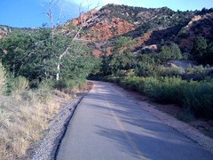 The trail up Cedar Canyon.
