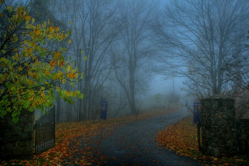 Enter the Misty Gate