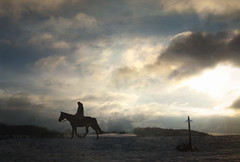 Knight Horse and Sword by h.koppdelaney @ Flickr
