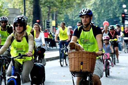 Freeweheel cyclists