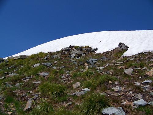 Penrose peak, just before the summit
