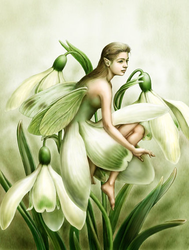 fairy snowdrop by you.