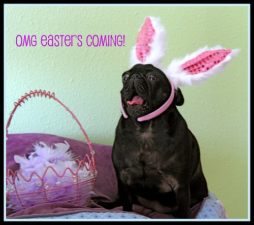 OMG Easter's Coming!!!