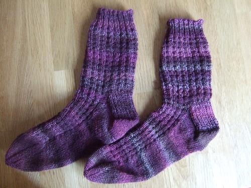 blueberry waffle socks