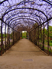Vienna: Schonbrunn, parco