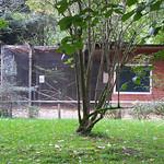 Tierpark Israelsdorf