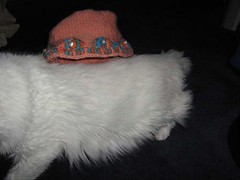 amber's hat on lily