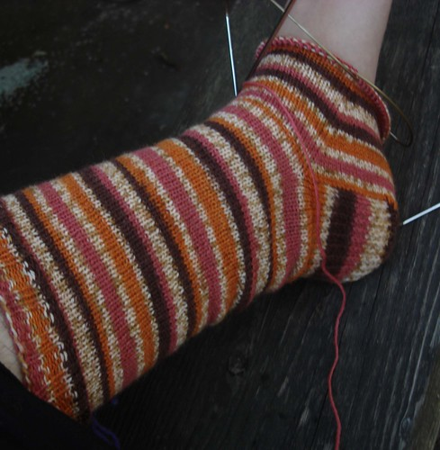 Trekking Crazy Browns on the needles.