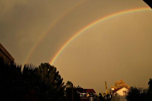 rainbow112608_5