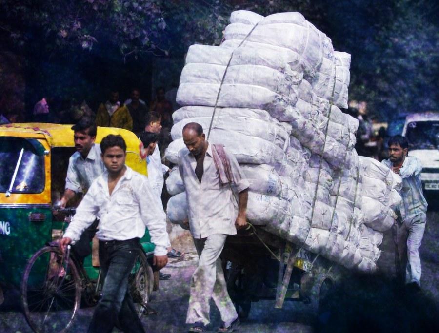 Carrying 100 Bags of Grain in Delhi