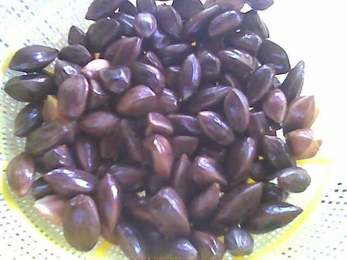 Dabai seeds