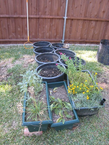 Container Planting Area