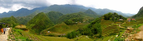 Rice Terraces of Cat Cat, Sapa - Panorama