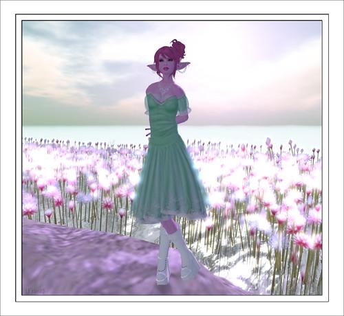 7-7 Blog 1
