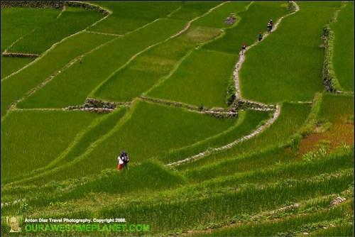 The Village of Batad-26