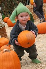 Pumpkin I have found