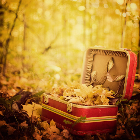 Sentimental journey (by IrenaS)