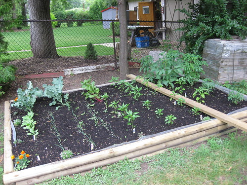 Raised Veggie Garden Plans