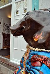 Congleton Bear 4