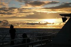 SeaLink Sunset