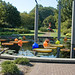 Botanical Gardens and Zoo 019