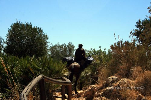 Sicilian Man riding a pack horse, Lo Zingaro Natural Reserve, Sicily