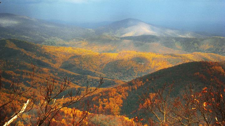 Foilage Trip, Shenandoah National Park, VA
