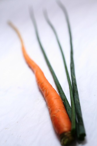 carrot and chives from my garden
