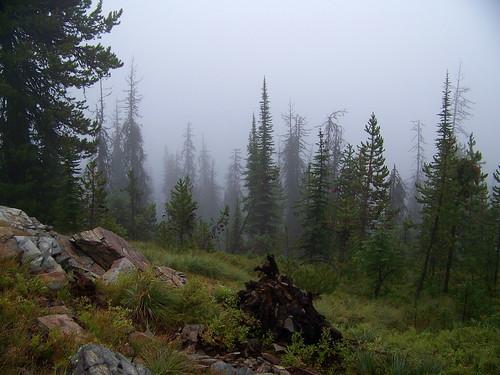 Trail 1714
