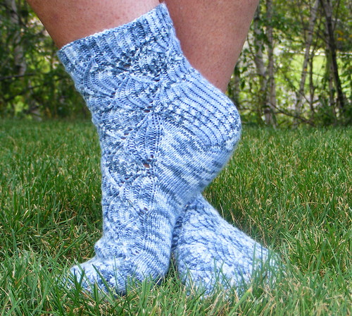 Toe-up Pomatomus Socks