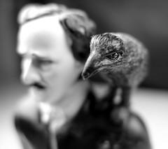 The raven (Edgar Allen Poe)